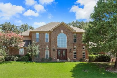 Highland Village Single Family Home For Sale: 495 Craig Circle
