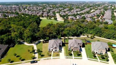 Allen Single Family Home For Sale: 1082 Arches Park Drive