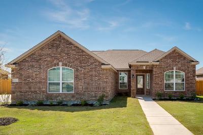 Glenn Heights Single Family Home For Sale: 613 Roaring Springs Drive