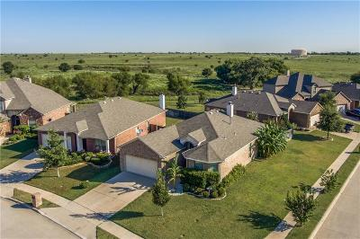 Haslet Single Family Home For Sale: 1360 Zanna Grace Way
