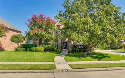 Carrollton Single Family Home Active Option Contract: 3824 Rockbrook Drive