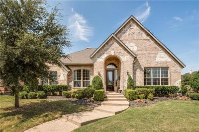 Lewisville Single Family Home For Sale: 600 Sword Bridge Drive
