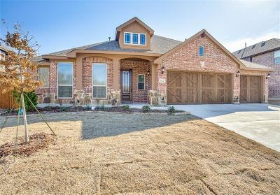 Single Family Home For Sale: 422 Tanglewood Drive