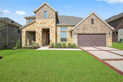Frisco Single Family Home For Sale: 4139 Kate Drive