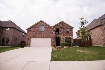 Little Elm Single Family Home For Sale: 3015 Lakefield Drive
