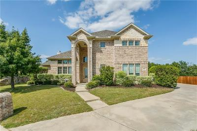 Willow Park Single Family Home For Sale: 1302 Saddle Trail