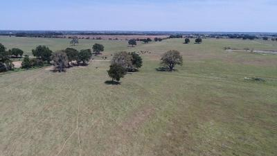 Stephenville Farm & Ranch For Sale: Tbd County Road 253