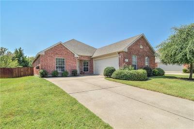 Allen Single Family Home For Sale: 1436 Sleepy Hollow Drive