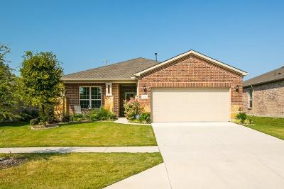 Frisco Single Family Home For Sale: 6553 Paragon Drive