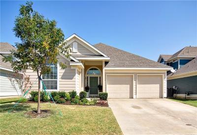 Mckinney Single Family Home For Sale: 9904 Tanglebrush Drive