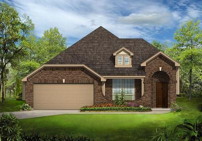 McKinney Single Family Home For Sale: 905 Summer Lane