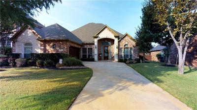 Highland Village Single Family Home For Sale: 4127 Abigail Drive