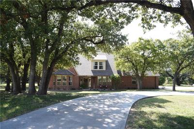 Weatherford Single Family Home For Sale: 166 Smokey Terrace Lane