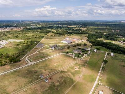 Argyle Farm & Ranch For Sale: 9255 Fort Worth Drive