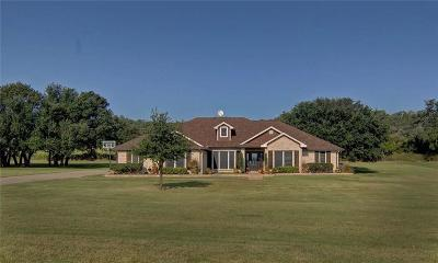 Mineral Wells Single Family Home For Sale: 350 Brazos West Drive
