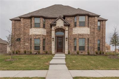 Frisco Single Family Home For Sale: 14219 New Braunfels