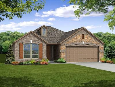Little Elm Single Family Home For Sale: 612 Fossil Creek Drive