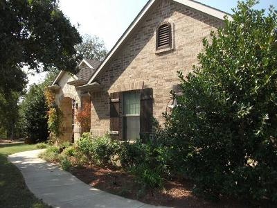 Wise County Single Family Home For Sale: 224 Cimmarron Vista Court