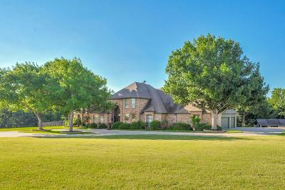 Ellis County Single Family Home For Sale: 1860 E Fm 875