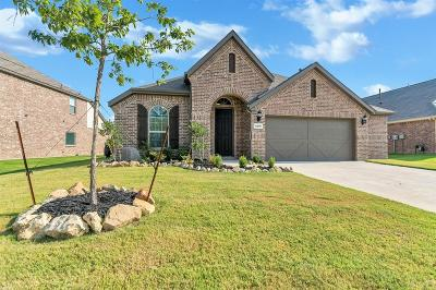 Argyle Single Family Home For Sale: 6409 Meandering Creek Drive