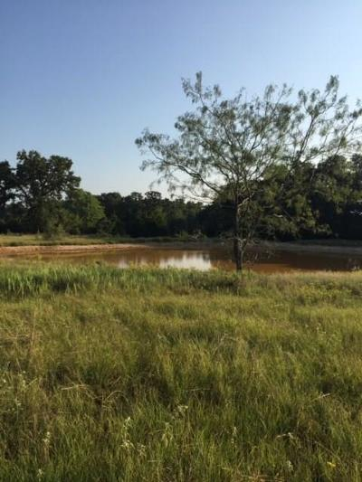 Groesbeck, Kosse Farm & Ranch For Sale: Tbd Fm 3371