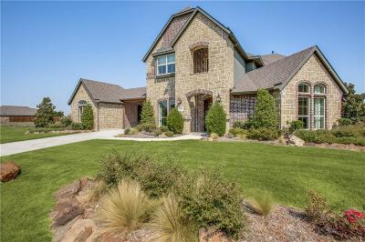Prosper Single Family Home For Sale: 1261 Saint Peter Lane