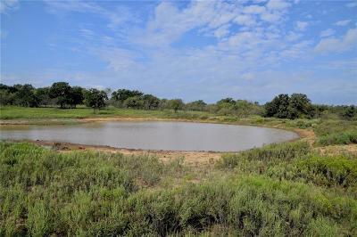 Jacksboro Farm & Ranch For Sale: 2060 Maxey Road