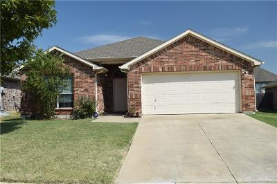Little Elm Single Family Home For Sale: 2039 Sunny Side Drive