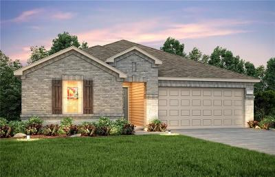 Little Elm Single Family Home For Sale: 3112 Adrian Creek Drive