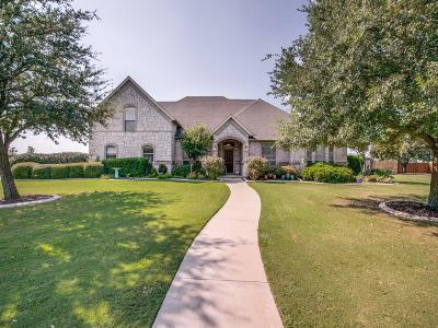 Haslet Single Family Home For Sale: 505 Bent Tree Lane