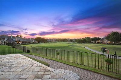Plano TX Single Family Home Active Option Contract: $465,000