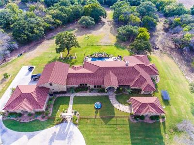 Weatherford Farm & Ranch For Sale: 125 Valley View Lane