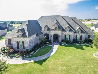 Prosper Single Family Home For Sale: 2040 Willow Bend Court