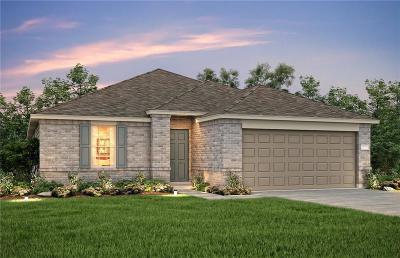 Little Elm Single Family Home For Sale: 3125 Manuel Creek Drive