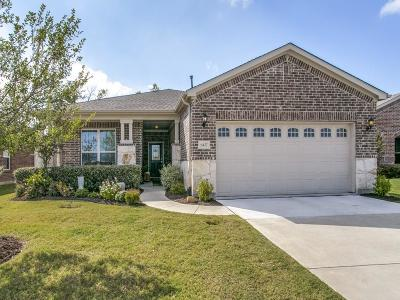 Frisco Single Family Home For Sale: 6427 Paragon Drive