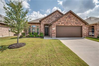 Little Elm Single Family Home For Sale: 613 Mist Flower Drive