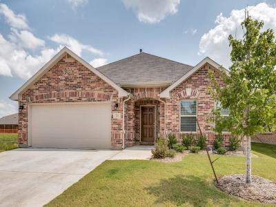 Little Elm Single Family Home For Sale: 725 Bird Creek Drive