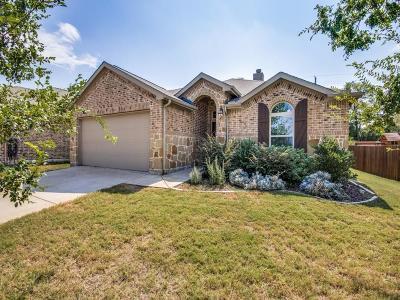 Single Family Home For Sale: 917 Kiowa Drive