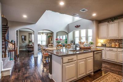 Denton Single Family Home For Sale: 9709 Meadowpark Drive
