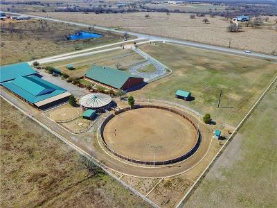 Jacksboro Farm & Ranch For Sale: 3664 W St Hwy 380