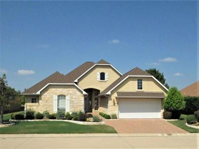 Denton Single Family Home For Sale: 10516 Countryside Drive