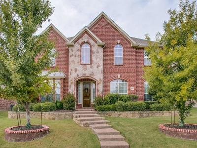 Allen Single Family Home For Sale: 1022 Hot Springs Drive