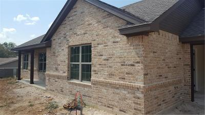 Springtown Single Family Home For Sale: 213 Westridge Drive