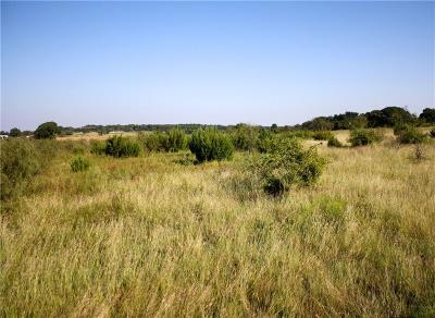 Stephenville Residential Lots & Land For Sale: 0000 Hill Valley Drive