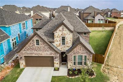 Little Elm Single Family Home For Sale: 1100 Horsetail Drive
