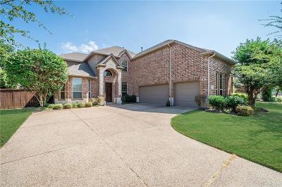 Allen Single Family Home For Sale: 2004 Hopewell Drive