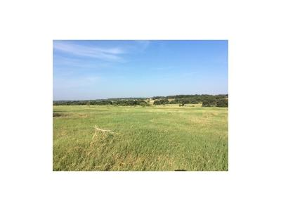 Weatherford Farm & Ranch For Sale: 4430-2 Tin Top Road