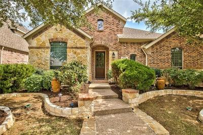 Allen Single Family Home For Sale: 2128 Chambers Drive