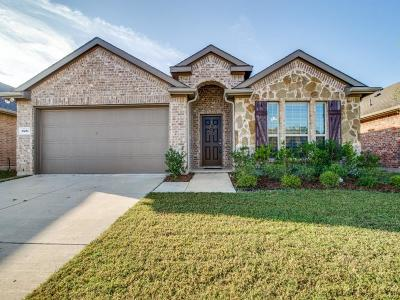 Anna Single Family Home For Sale: 1821 Pecan Grove Drive