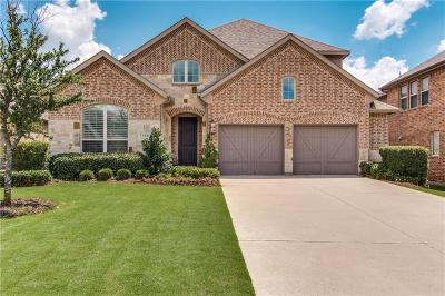 Irving Single Family Home For Sale: 7308 Paluxy Drive